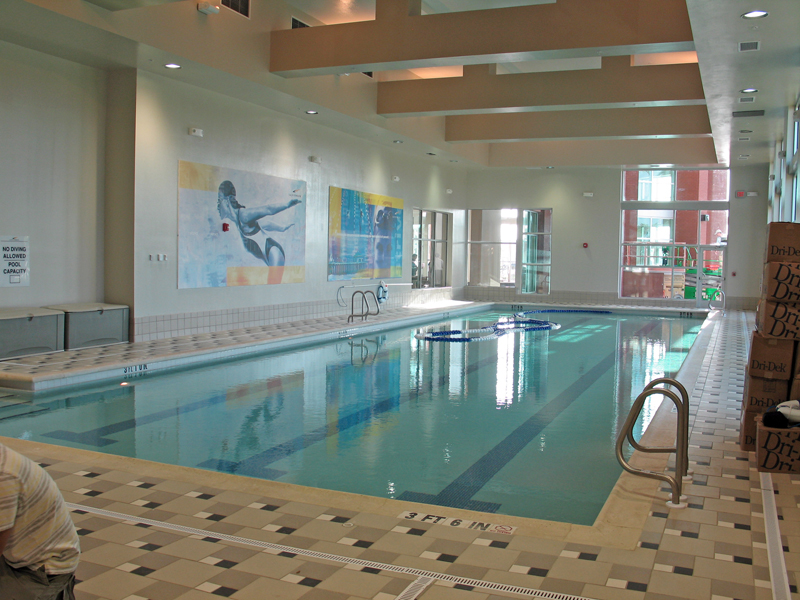 Sarasota commercial swimming pool builders for Custom indoor pools