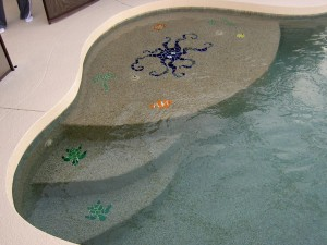 Residential Pool with custom tile inlays
