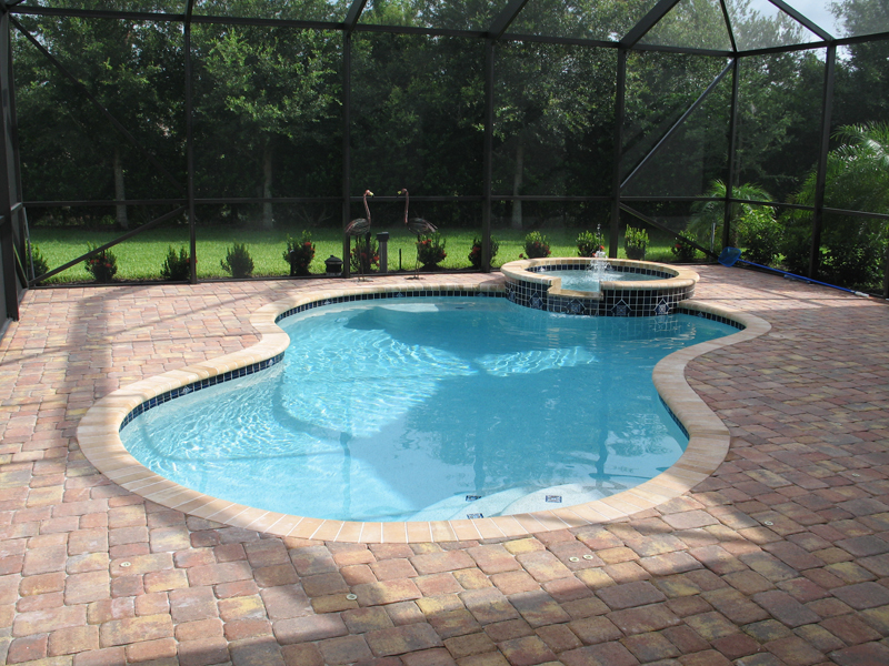 residential swimming pool builders sarasota residential pool construction