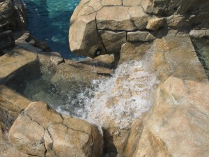 Custom Residential Pool & Spa with wateralls and Grotto
