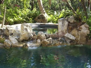 Coral rock custom pool