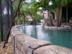 Rock wall pool