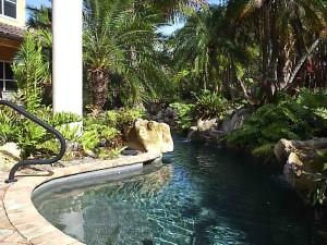 Tropical pool 1