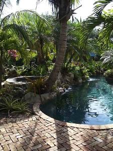 Tropical pool 2